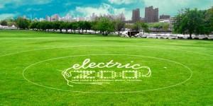 Electric Zoo 2010